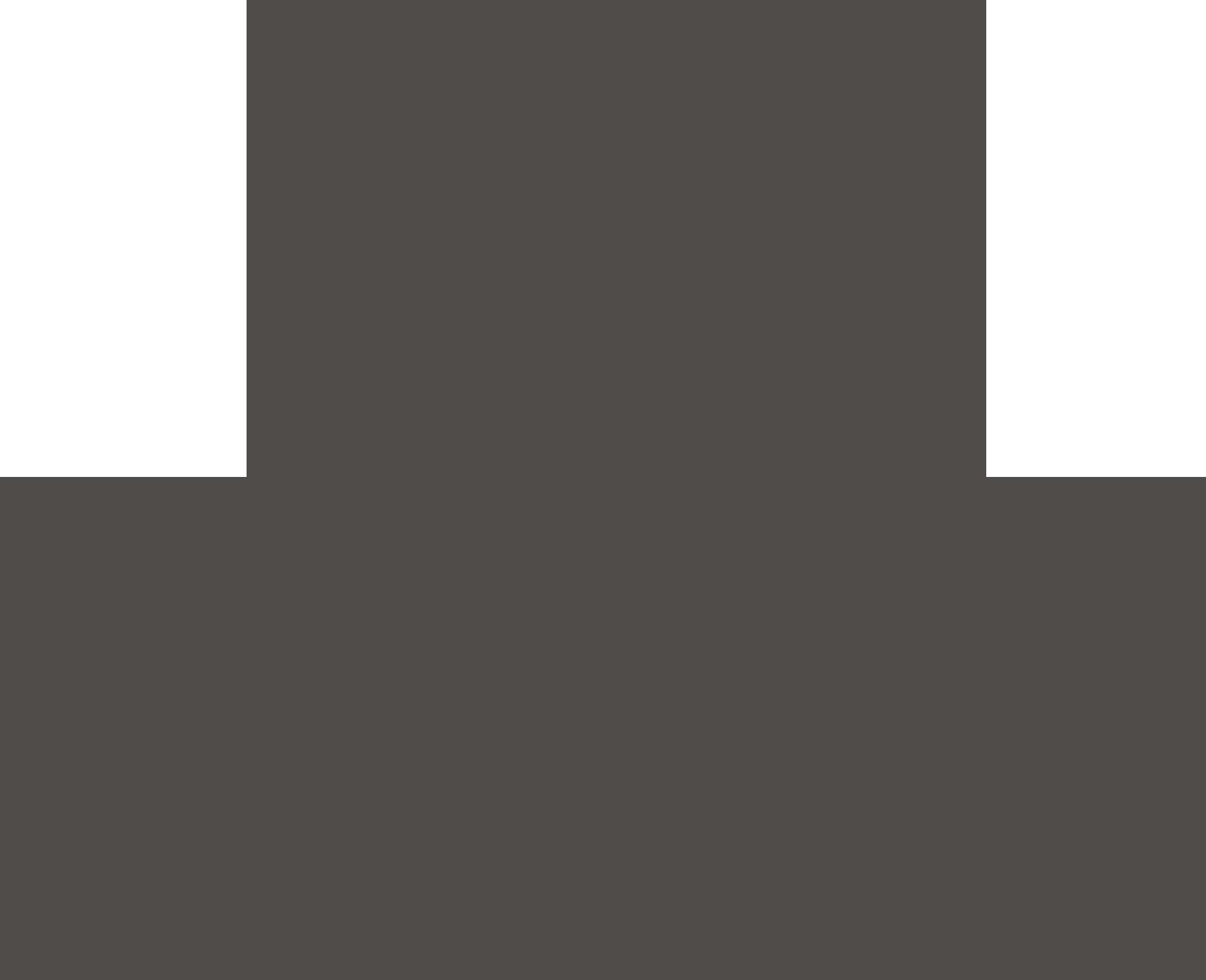 Borculo CSI logo